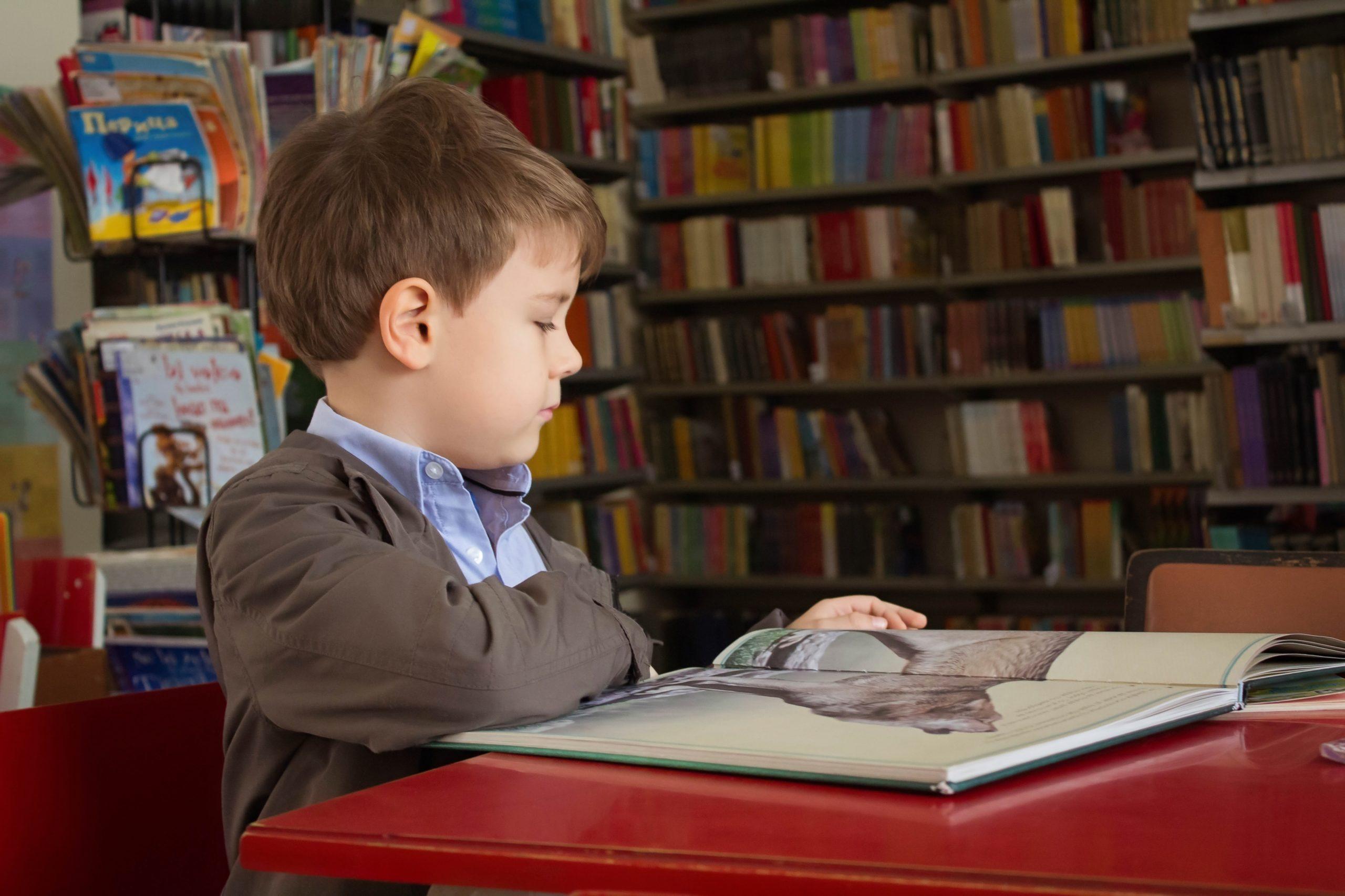 Школьное образование во Франции - Russervice